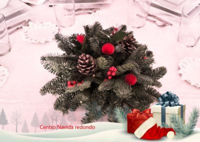 centro navidad redondo